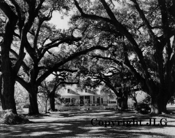 Oakland Plantation Louisiana