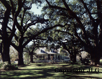 Oakland Plantation - Louisiana