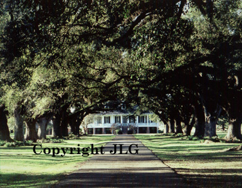Oaklawn Plantation - Louisiana