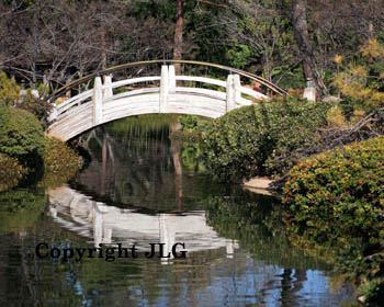Japanese Garden Bridge - Fort Worth, TX
