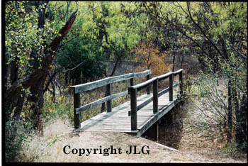 Wooded Bridge - Cedar Hill State Park, Dallas, TX