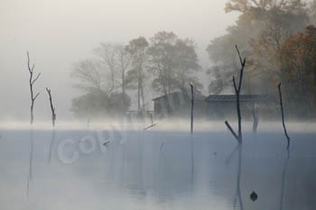 Rising Fog - Echo Lake, TX